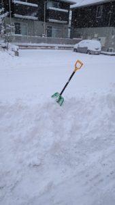 祝日、雪でも顔晴ります(^^)/