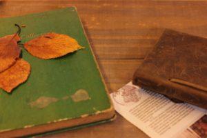 東洋医学からみた秋の養生法