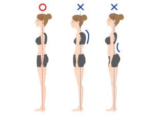 姿勢と内臓の負担