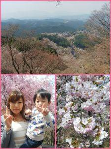 ★美しい吉野山★