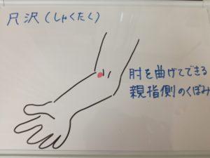 ◆秋風邪予防に尺沢(しゃくたく)◆